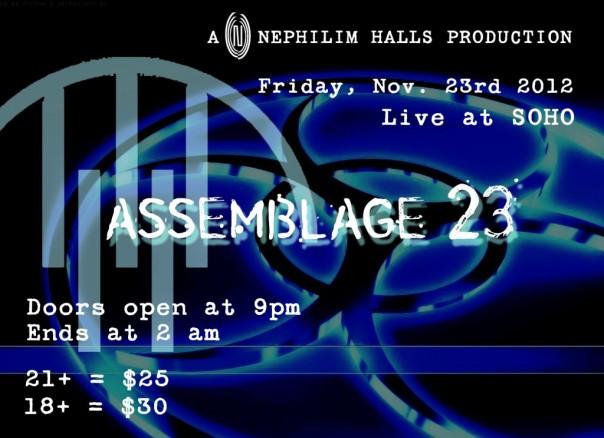 Assemblage 23 in Hawaii Flyer-Streetzblog.com