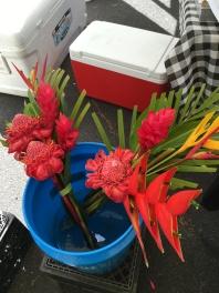 Hawaiian Flowers #2