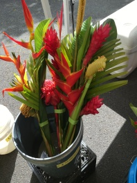 Hawaiian Flowers #1