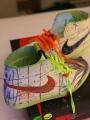Make n Take Nike Air Jordan 1 RetroHI