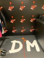 Depeche Mode at DSM
